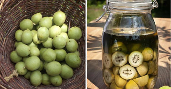 Настойка зеленого грецкого ореха на спирту применение