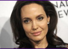 «Одна такая». Анджелина Джоли покорила поклонников своим воздушным образом